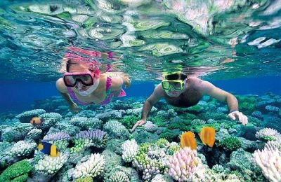Tour Đảo Nha Trang Tàu Cao Tốc